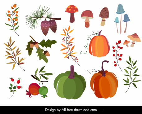 nature design elements mushroom pumpkin leaf sketch