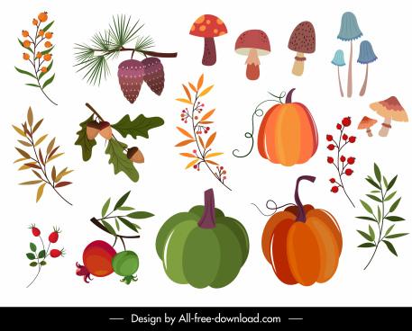 nature design elements mushroom pumpkin leaf sketch