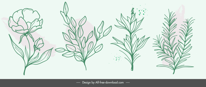 nature elements icons handdrawn botany leaves sketch