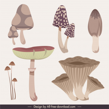 nature elements icons mushrooms shapes sketch classic design