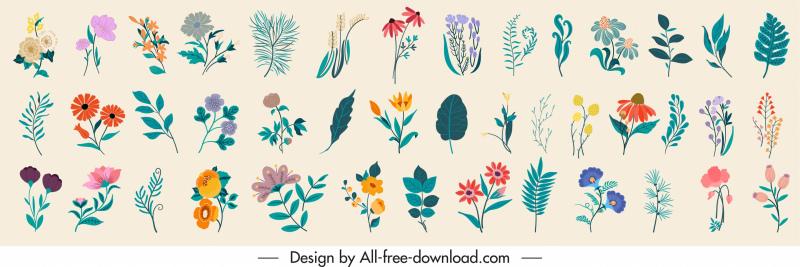 nature elements pattern colorful classical botanical leaf sketch