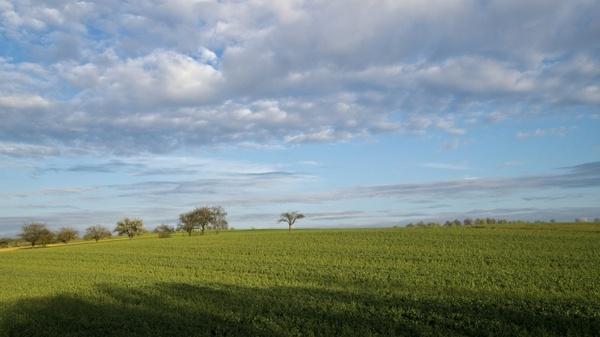 nature land field