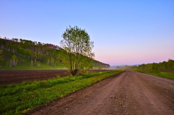 nature landscape road