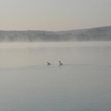 nature morning lake michigan