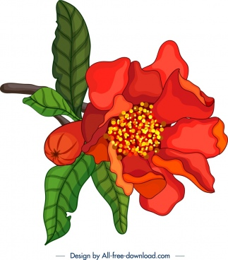 nature painting red pomegranate flower icon