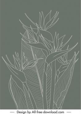nature plants painting retro handdrawn monochrome design
