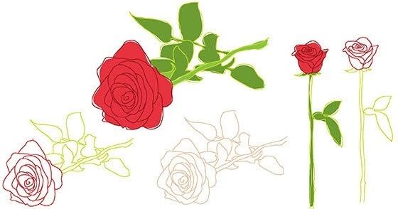 Nature rose flower leaf outline