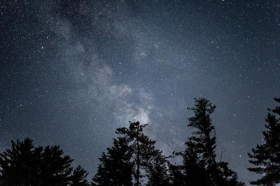 nature stars milky way night galaxy astro trees sky