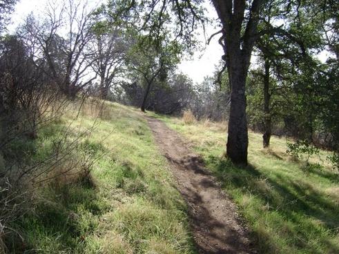 nature trail 1