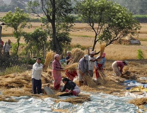 nepal people gathering