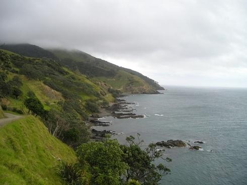 new zealand coast green