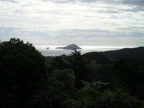 new zealand islands back light