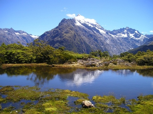 new zealand mountains see