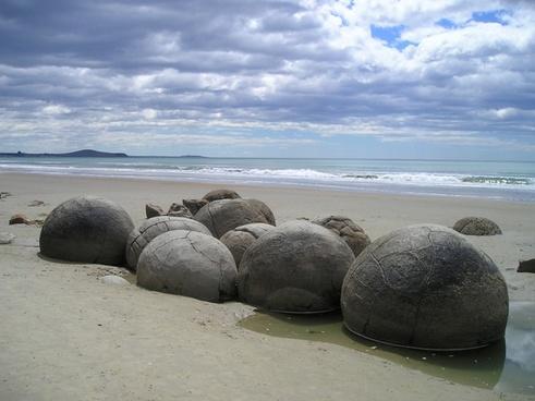 new zealand sea beach