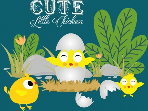 newborn chicks background colored cartoon design