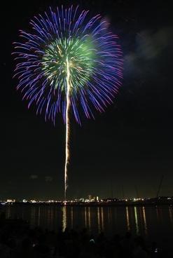 nice flower fireworks