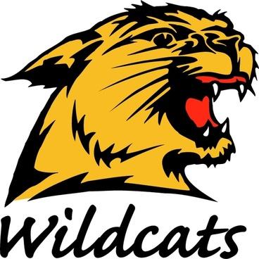 nmu wildcats 0
