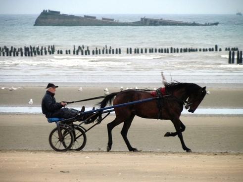 normandy france utah beach