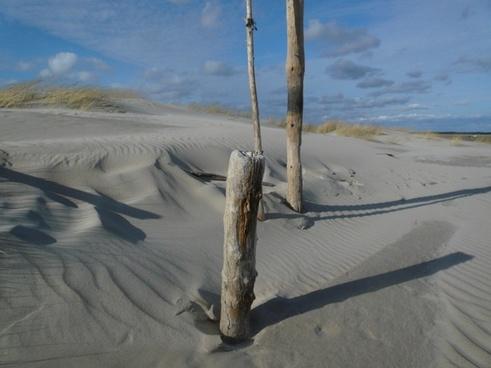 north sea dunes beach