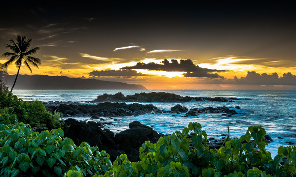 north shore seascape