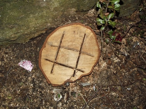 noughts amp crosses carved on a tree
