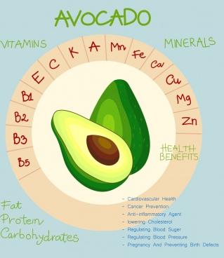 nutrition infographic avocado icon circle design