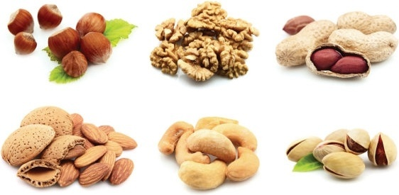 nuts and dried fruit hd pictures