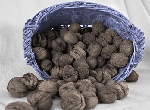 nuts basket brown