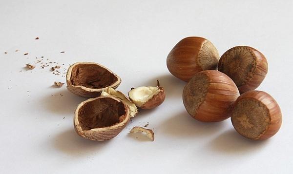 nuts hazelnuts shell