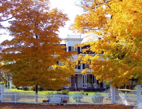 old house in autumn trees