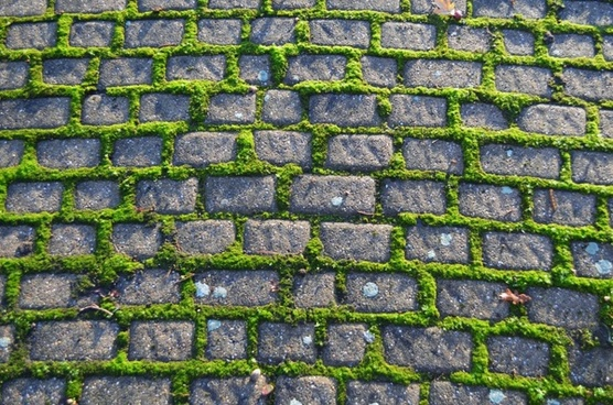 old pavement footpath