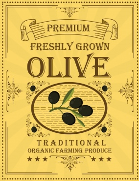 olive advertising classical design fruit texts decoration