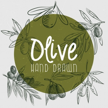 olive advertising handdrawn fruits decoration