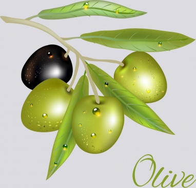 olive icon shiny green black design
