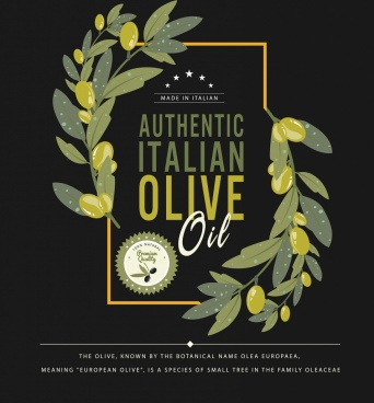 olive oil advertising green fruit icon dark design