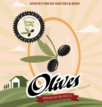 olive products advertisement fruit seal icons farm background