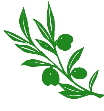 Olive Tree Branch clip art
