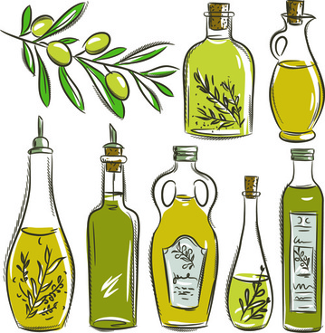 olives and olive oil hand drawn vector
