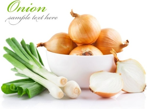 onions and green onions highdefinition picture