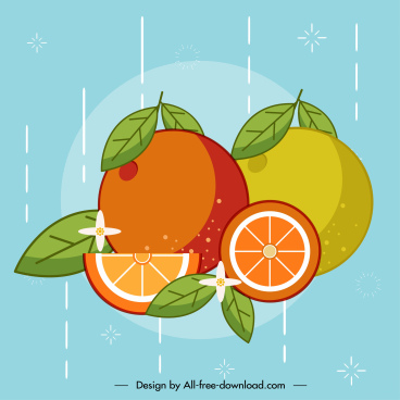 orange fruit background colorful classic handdrawn sketch
