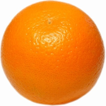 orange highdefinition picture