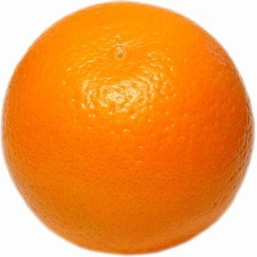 orange highdefinition picture