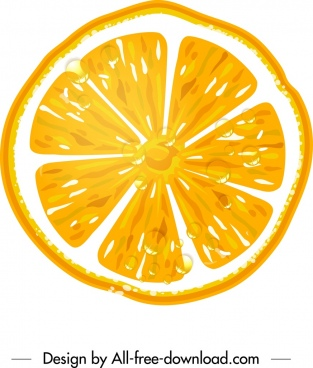orange icon yellow flat slice closeup decor