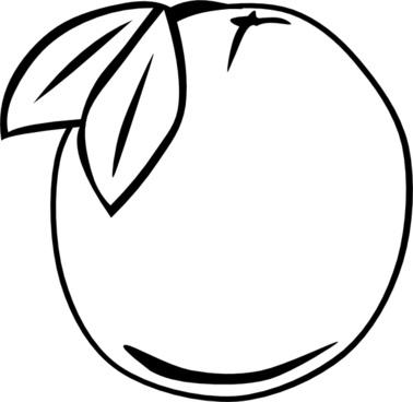 Orange Outline Fruit clip art