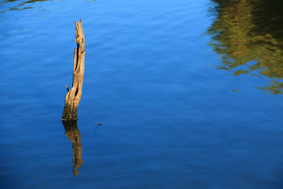 orange river reflections