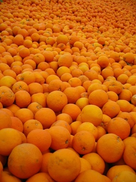 orange spain sunny