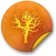 Orange sticker badges 051