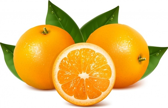 orange fruit background shiny modern realistic sketch