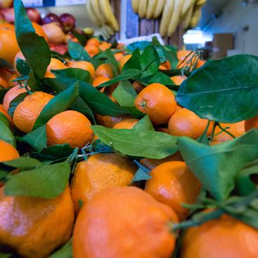 oranges amp clementines