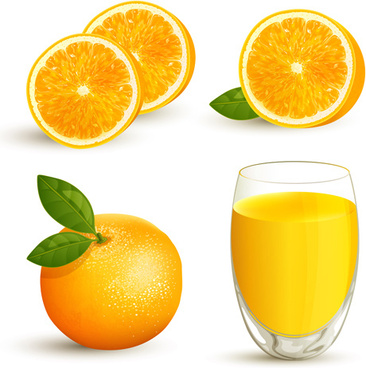 oranges with juice creative vector